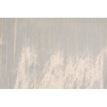 E-glass-Epoxy Prepreg MTC510-UD600-EGLASS-35%RW, Width 300 mm