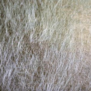 Velo de Fibra de Vidrio Superficial de tipo C (Químico) de 30 g/m2