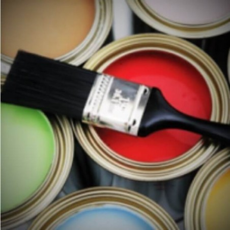 Paints / Varnishes